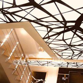 bina girisi gergi tavan uygulaması